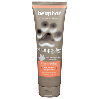 Picture for category BEAPHAR Shampooing shampoos for dogs