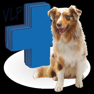 Obrázok pre kategóriu vyhrazené léčivé přípravky pro psy