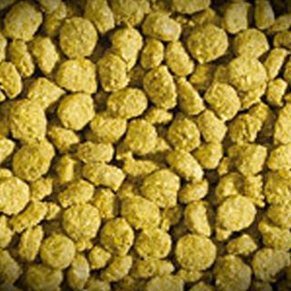 Obrázok pre kategóriu krmivo pro plazy