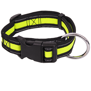 Picture for category Dog Fantasy Neoprene - collars