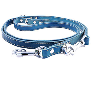 Picture for category Tamer leather leashes switch